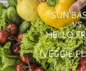 Sun Basket Vs Hello Fresh Vegetarian Meal Kits