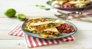 Best Hello Fresh Tacos and Quesadillas